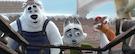 Trailer: Snežná hliadka (2019)