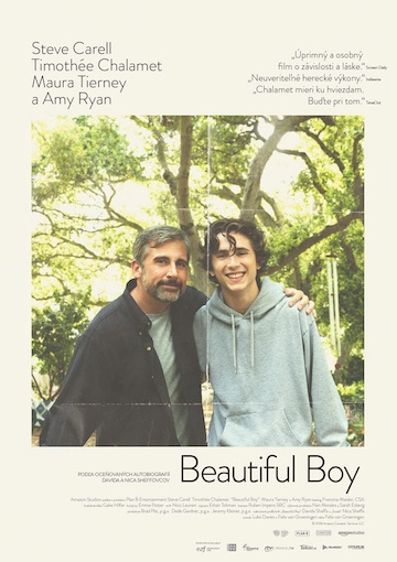 film Beautiful Boy (2018)