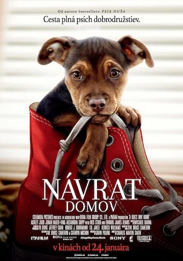 film Návrat domov (2019)