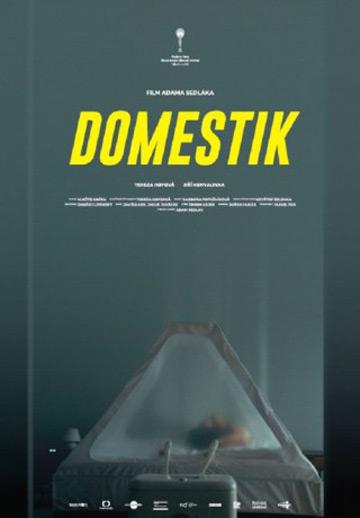 film Domestik (2018)