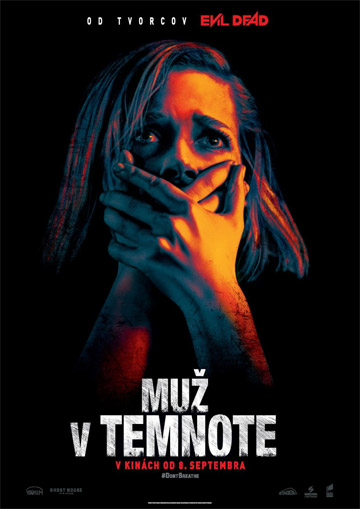 film Muž v temnote (2016)