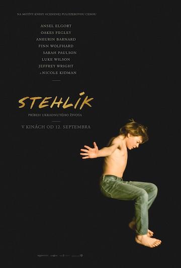 film Stehlík (2019)