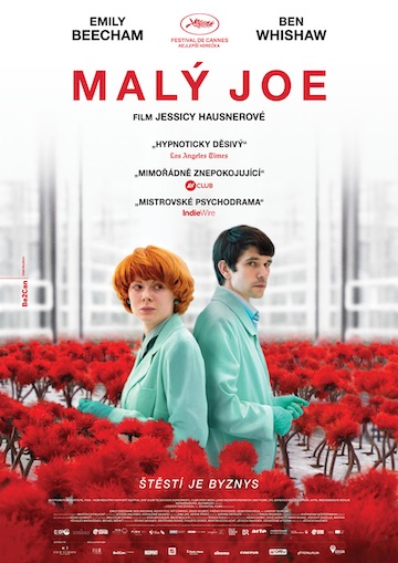 film Malý Joe (2019)