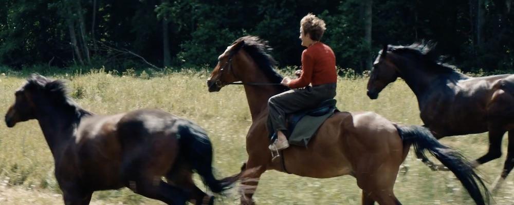 Film Poďme kradnúť kone (2019)