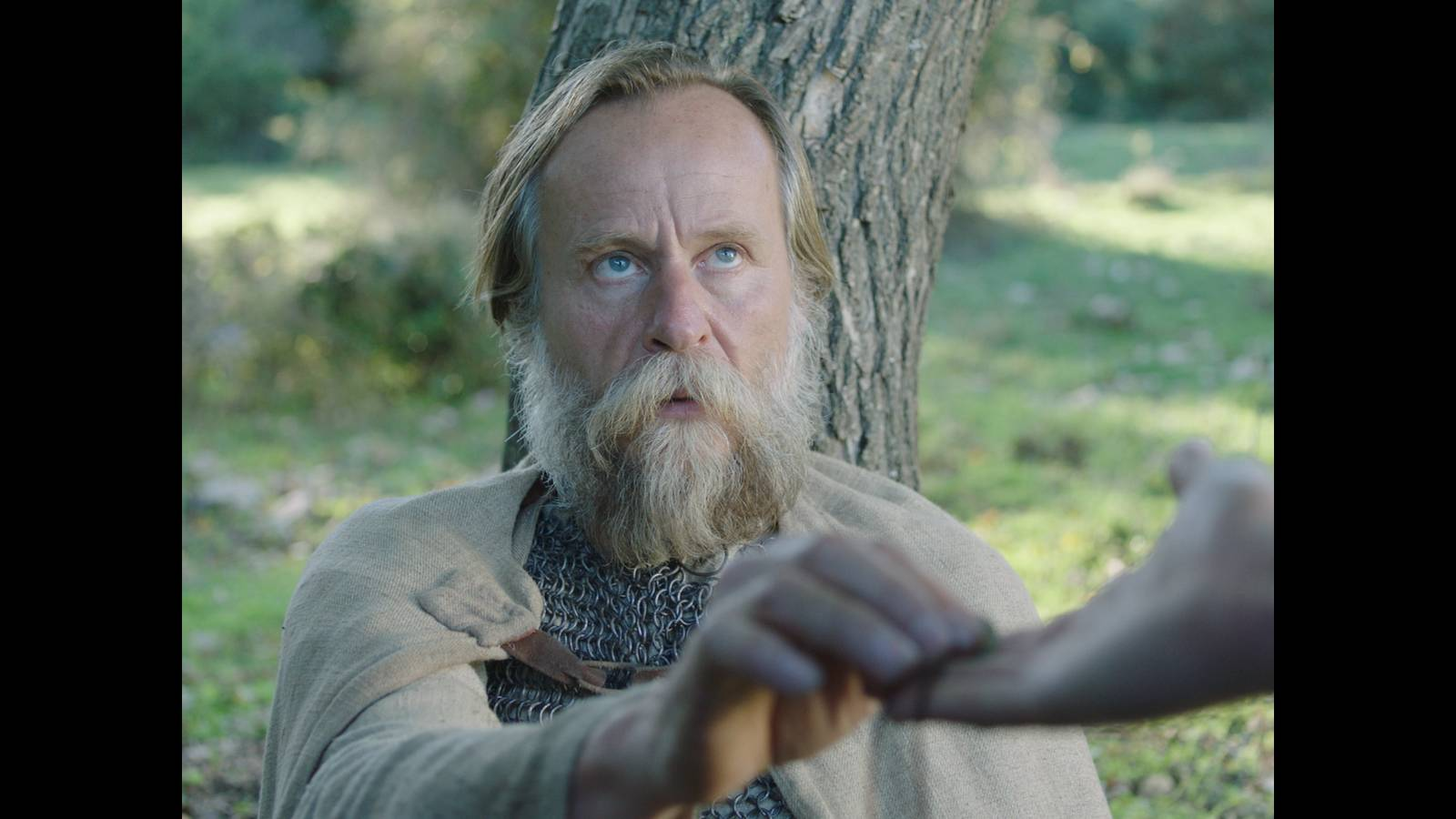 Film Křižáček (2017)