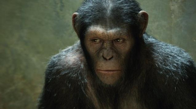 Film Zrodenie planéty opíc (2011)