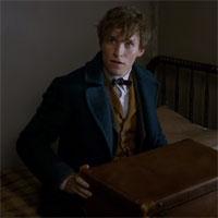 Vyšiel prvý trailer k filmu Fantastické zvery: Grindelwaldove zločiny