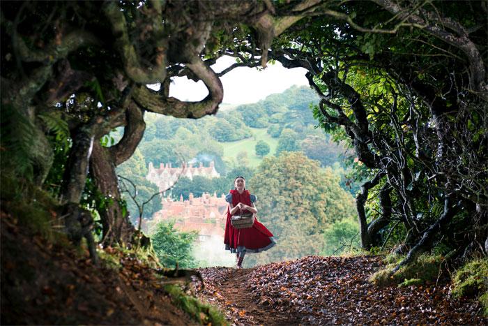 Súťaž s filmom Príbehy z lesov