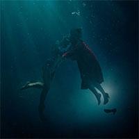 Čierny panter, Podoba vody, či Disaster Artist od dnes v našich kinách