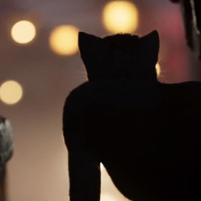Vyšiel trailer k muzikálu Cats, ktorý už teraz polarizuje filmovú verejnosť viac ako Leví kráľ