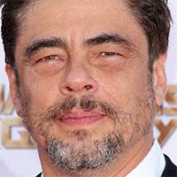 Osobnosť Benicio del Toro