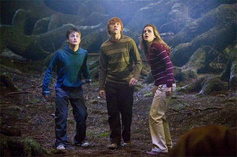 Harry Potter a Fénixov rád (2007)
